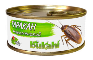 Консервированные туркменские тараканы