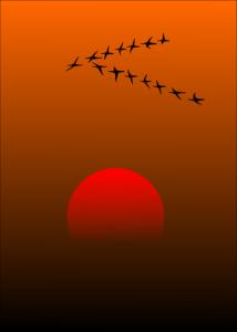 Косяк перелетных птиц