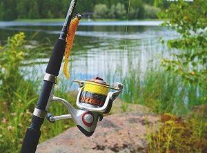 Живые насадки для рыбалки